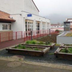 Lycée de Navarre - Plantation aromates- - 1
